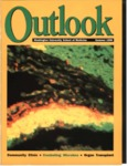 Outlook Magazine, Summer 1998